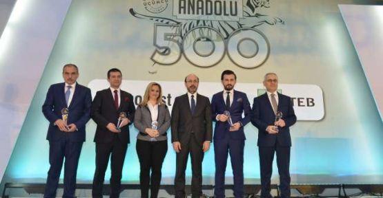 Anadolu'nun en büyük 500'üne ödül